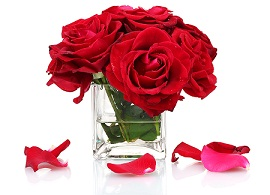 Cube vases with beautiful red roses