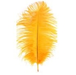 "17-21"" Ostrich Feathers - Gold (1/2 Pound)"