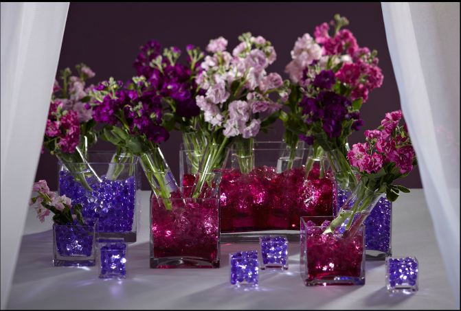 Floralytes in cube vases with flowers